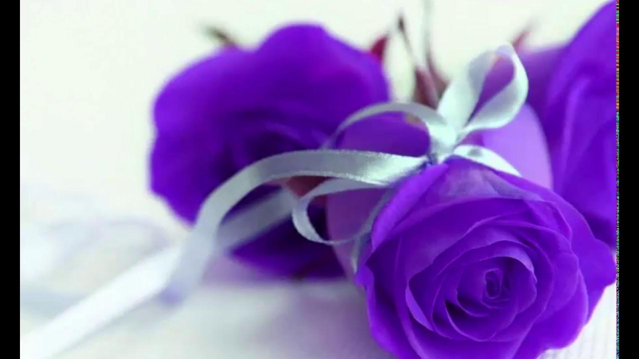 50 bó hoa sinh nhật đẹp nhất thế giới dành tặng mẹ, vợ, người yêu