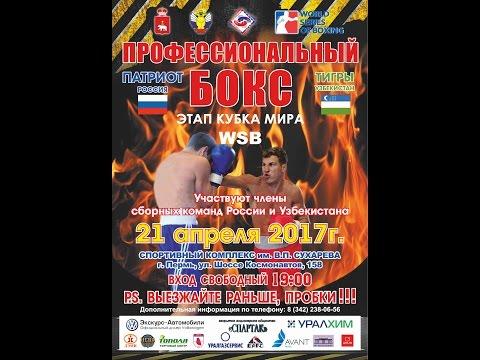 WSB. Patriot Boxing Team - Uzbek Tigers