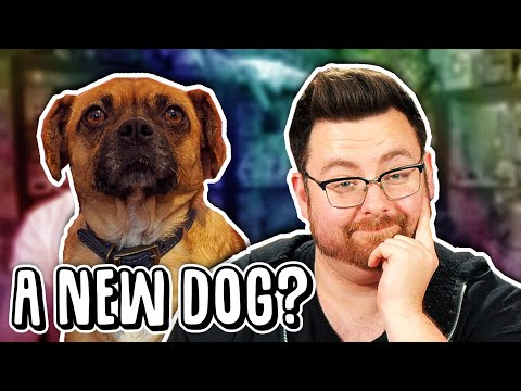 New Dog, Losing A Job, And Unboxing Muffin Time - Last Month Podcast #1