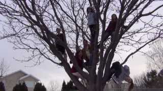 Family Tree Rhapsody