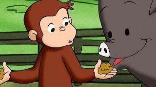 George O Curioso 🐵George e o Dedão Gigante🐵Episódio Completo 🐵 Desenhos Animados