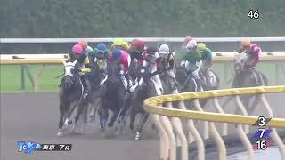 レース結果 http://keibalist.com/race/201805030407/ ペイシャエヴァー...