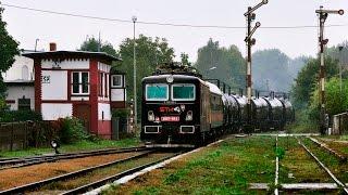 Diesle na Dolnym Śląsku. ||ST44, ST43, SM42, M62, SM03|| 19.09.2016 r.