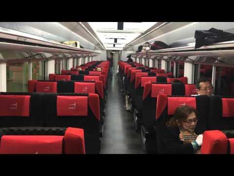Narita Express Train, Tokyo, Japan