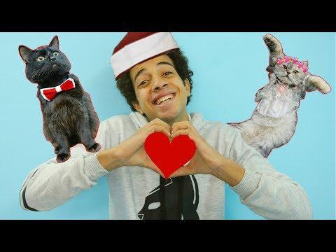 لاول مره فى مصر فرح للقطط ( سيمبا اختار شريكه حياته )