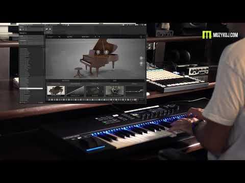 Arturia Piano V2 4K