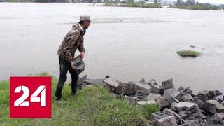 Паводок в Приангарье: вода ушла из 13 населенных пунктов - Россия 24