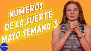 NUMEROS DE LA SUERTE | MHONI VIDENTE