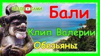 Остров Бали. Клип Валерии. Храм Улувату. Приколы с обезьянами.
