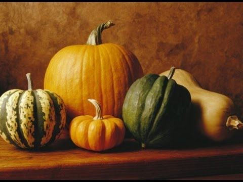 how-to-prepare-and-cook-winter-squash