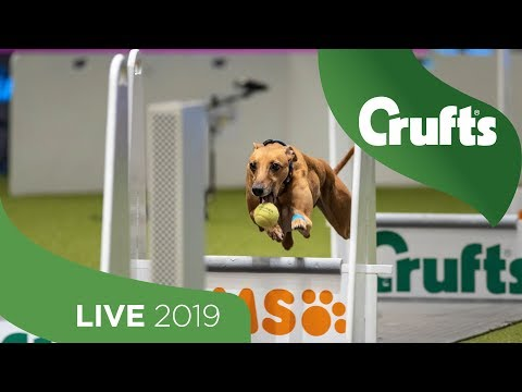 Crufts 2019 Day 3 - Part 2 LIVE