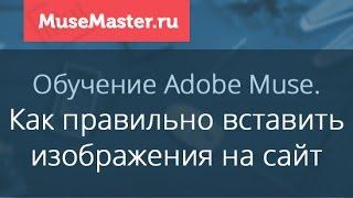 #15. MuseMaster.ru. Импорт изображений в Adobe Muse