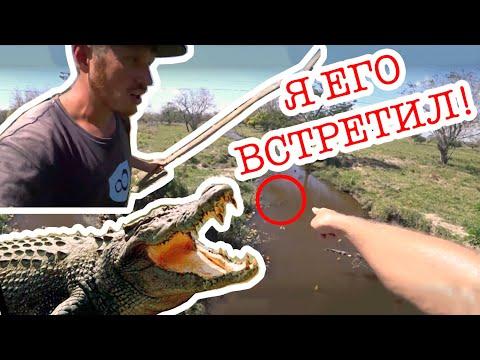 Встреча с крокодилом в Панаме | Путешествие по Латинской Америке | #25