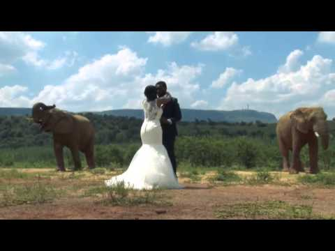 Judy & Tres   Askari Game Lodge Wedding Highlights Trailer