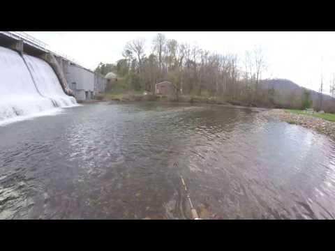 Fishing the Base of the Lake Junaluska Dam For Anything That Bites!