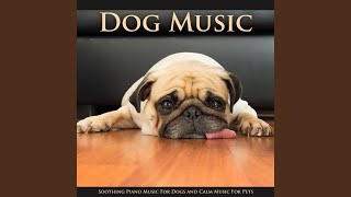 Calm Music For Dogs