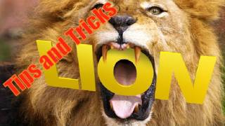 Mac OS X Lion: Tips and Tricks