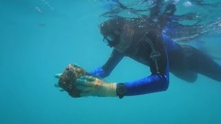 Dallas Campbell dives for pearls - The Treasure Hunters: Episode 1 Preview - BBC One