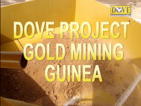 GUINEA GOLD MINING