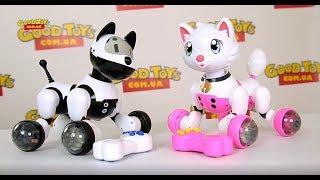 Интерактивный робот собака или робот кот? Что выбрать с радиоуправляемых животных? MG013  MG014