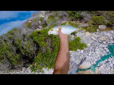 Antigua Supper Fish Hunt