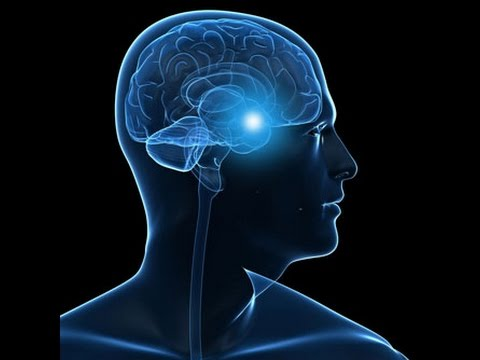 Demystifying Post-Traumatic Stress Disorder (PTSD)