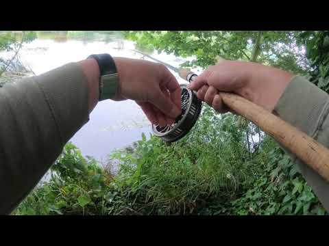 Dorset Stour Barbel Fishing