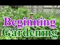 Beginning Gardening Series #1: Best Location for a Vegetable Garden