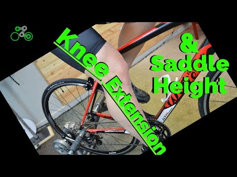 Knee Extension & Saddle Height | Rules, Nuances, and the Ank