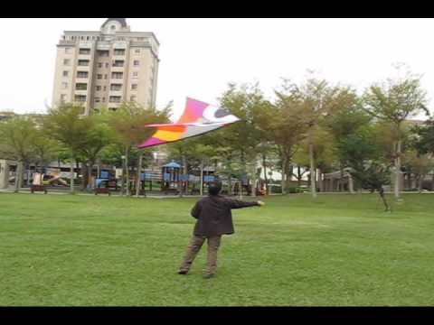 Wala(aerobe) XL - Flying Wings Kites