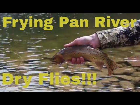 Dry FLY FISHING Adventure, Frying Pan River Spring 2018 Vlog 26