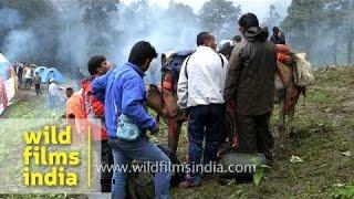 Devotees at base camp area en route Homkund - Nanda Devi Raj Jat Yatra