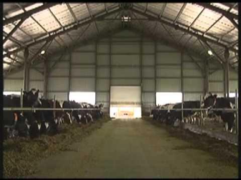 Ukrainian Milk Company presentation