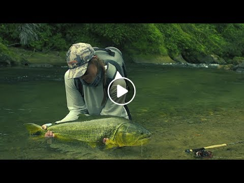 Fly Fishing For Dorado In Bolivia In TSIMANE 3X – Season Two