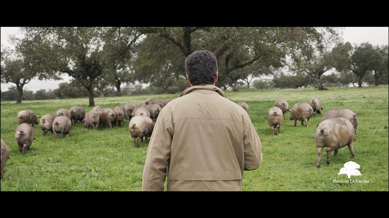 Ibéricos La Encina: Publirreportaje