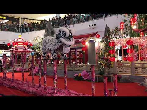 LION DANCE at IOI MALL PUTRAJAYA january 2019