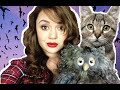 CATS BATS AND OWLS OH MY! (Tuesdays Treasures 2)