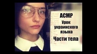 АСМР Учитель украинского языка *Части тела*\ASMR Ukrainian teacher *Parts of the body*