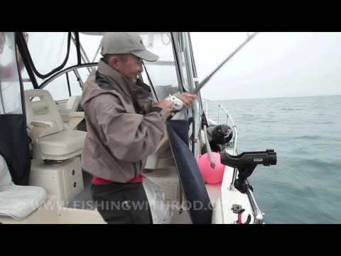 Halibut Fishing In Kyuquot Sound BC