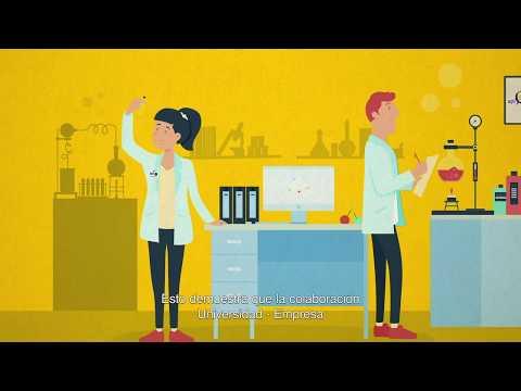 Tecnologías UDD: Biocida Apícola, una colaboración universidad-empresa