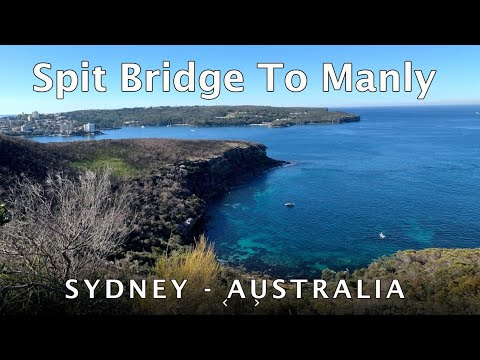 Sydney Harbour Spit Bridge To Manly Coastal Walk (Manly Scenic Walkway)