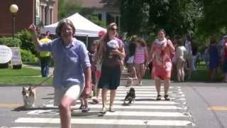 Pet Parade 7-4-13