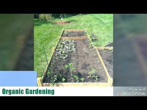Santos Organic Farming