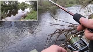 Рыбалка на голавля проверка места летней рыбалки