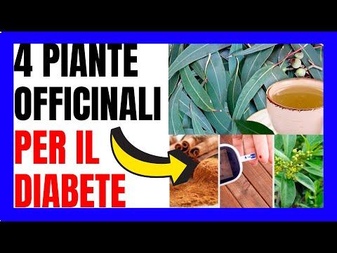 4-piante-officinali-per-guarire-dal-diabete-👈🧅✅