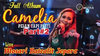 Download FULL ALBUM CAMELIA PELAN TAPI PASTI PART#2  LIVE MOSARI