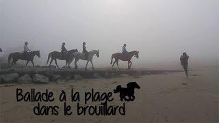 Un moment avec nous - 1ère balade à la plage de l'année - Etrier Cherbourgeois