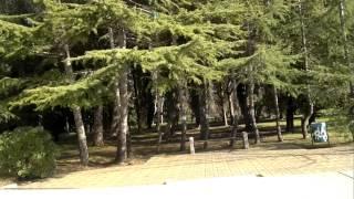 видео Санаторий «Коралл» в Сочи