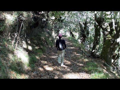 O Courel. Ruta Vilamor-Froxán-Vilar-Vilamor