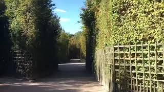 Labyrinths of Versailles - The truth behind the mystery
